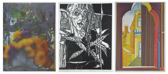 works by Joan Lyons, Judd Williams and Clare Romano