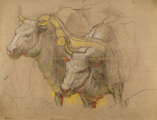 Study of Oxen, for Pioneer Family